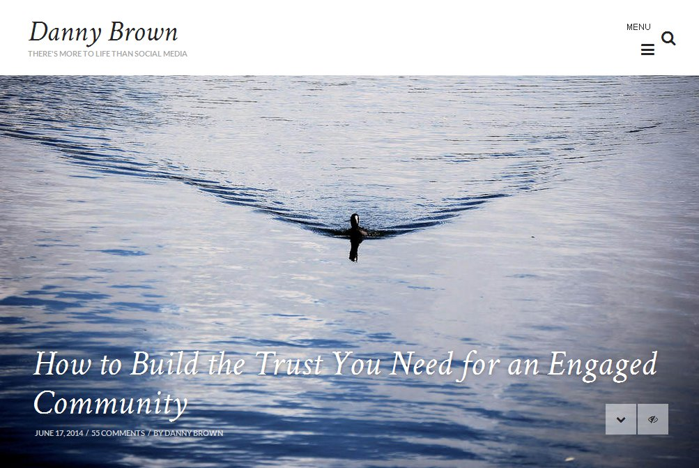 Image of lonely swimming duck
